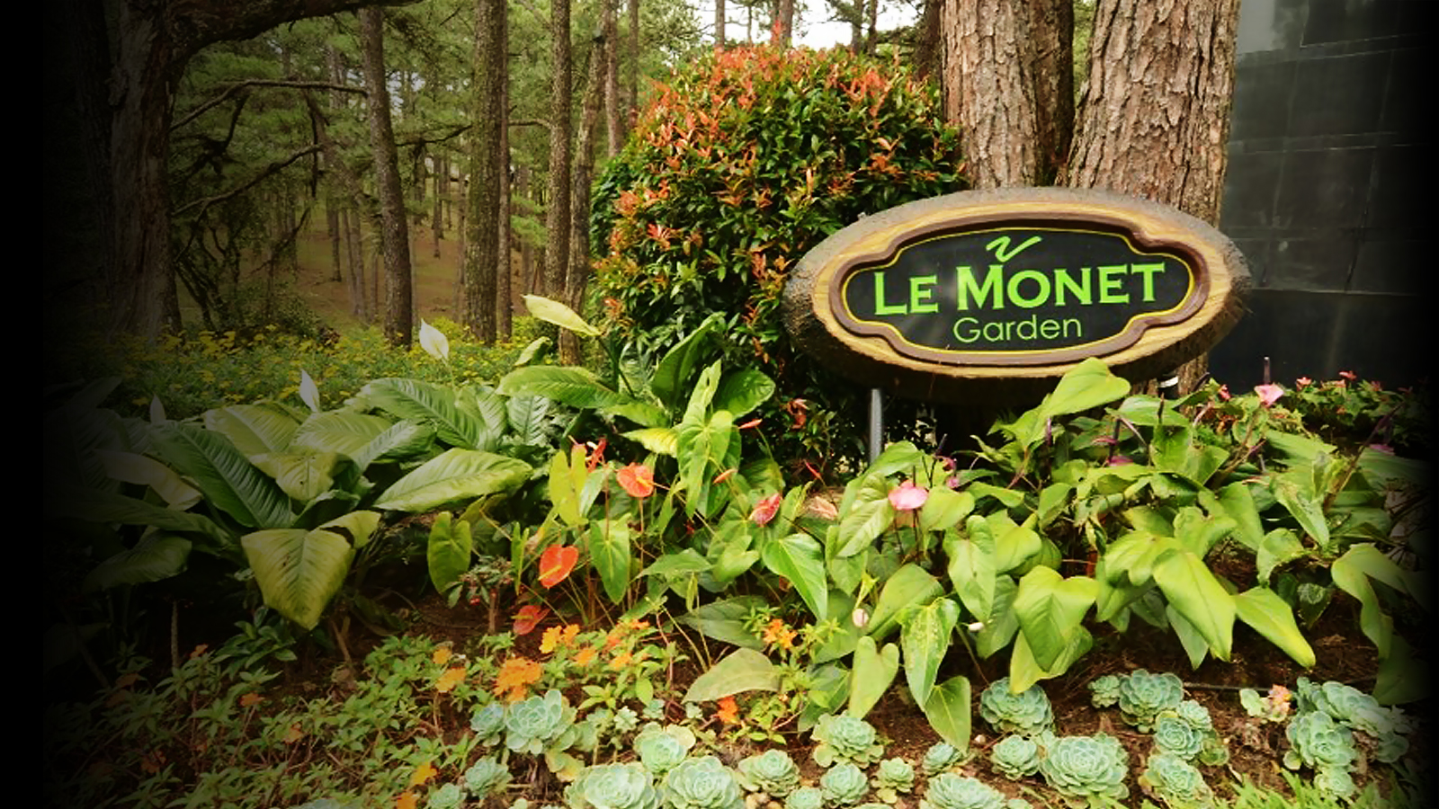 Welcome to Le Monet Hotel
